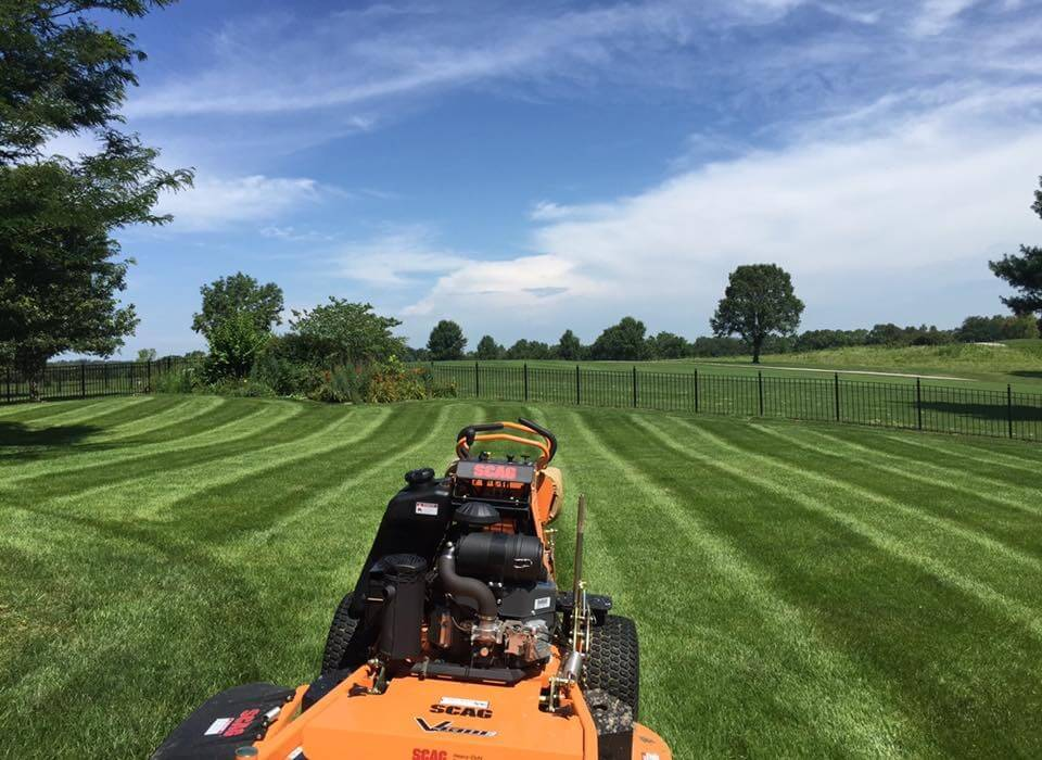 Trulawn hd llc lawn mowing and landscape services for Lawn mowing and garden maintenance